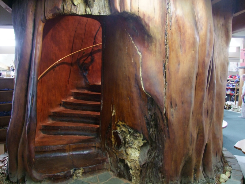 Carved Kauri staircase-800